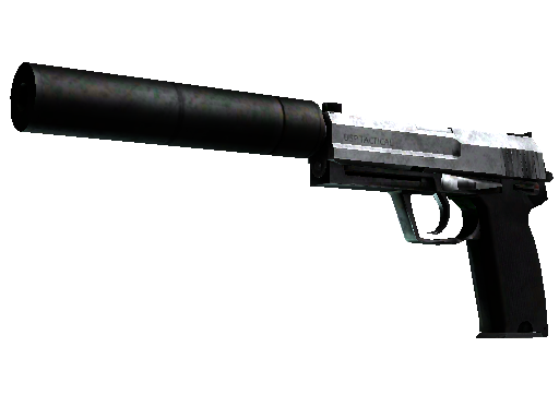 StatTrak™ USP-S | Stainless (Battle-Scarred)