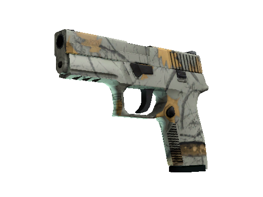 P250 | Modern Hunter (Minimal Wear)
