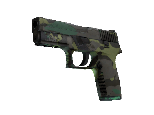 P250 | Boreal Forest (Well-Worn)