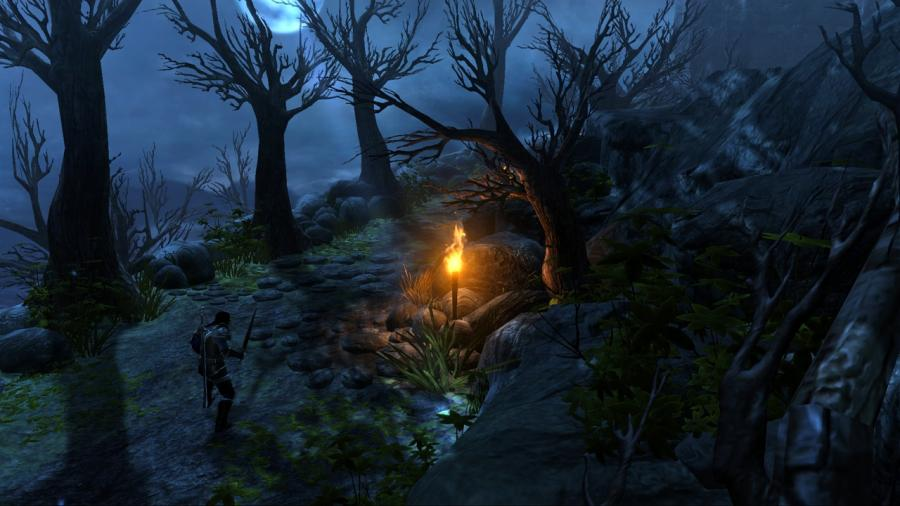Dungeon Siege 3 Screenshot 1