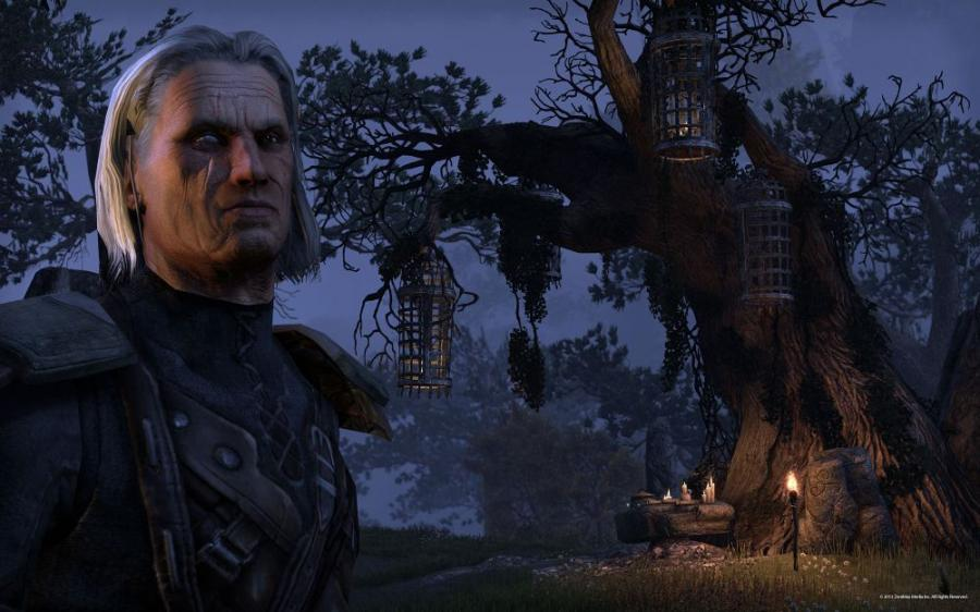 The Elder Scrolls Online - Gamecard 60 Days Screenshot 4