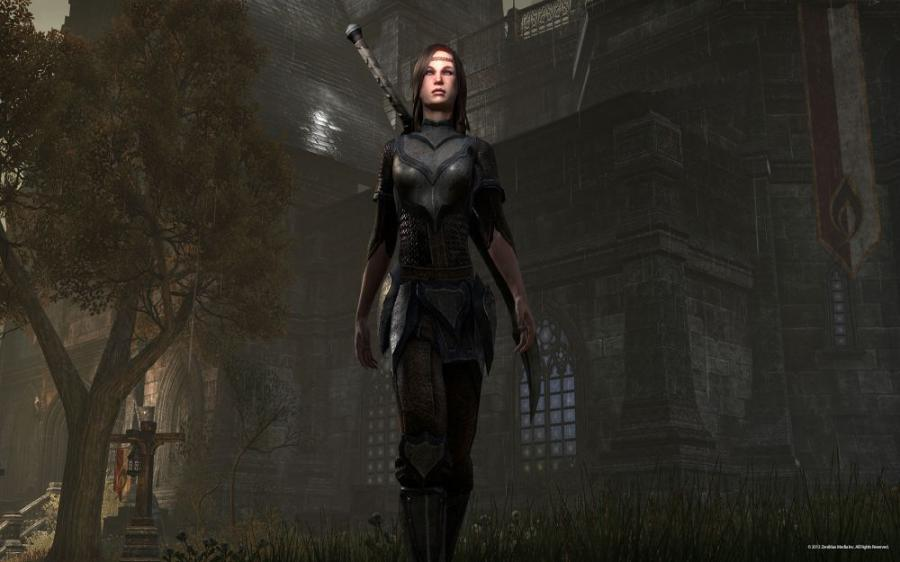 The Elder Scrolls Online - Gamecard 60 Days Screenshot 8