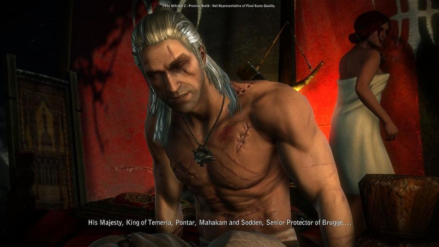The Witcher 2 - GOG Key Screenshot 4