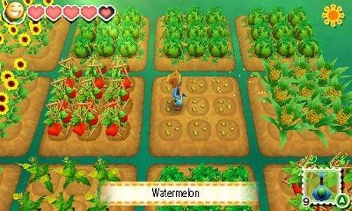 Story of Seasons - 3DS Screenshot 3