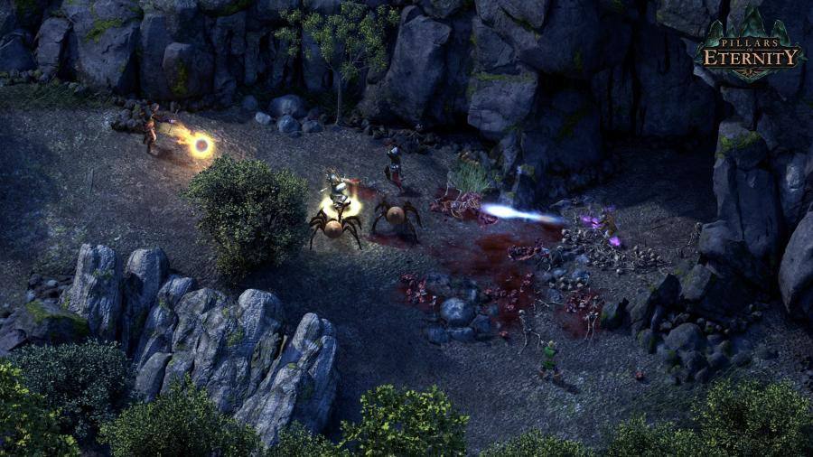 Pillars of Eternity - Game of the Year Edition Screenshot 3