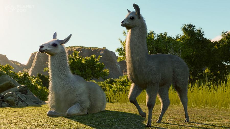 Planet Zoo - South America Pack (DLC) Screenshot 7