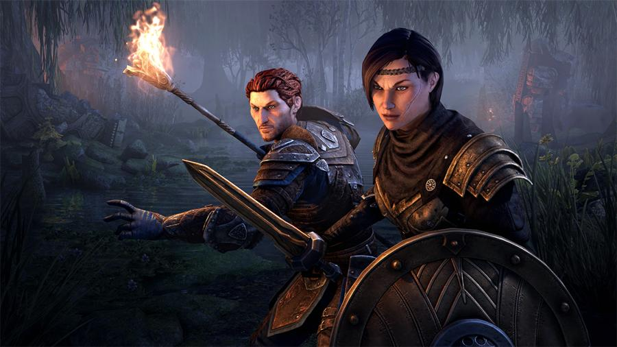The Elder Scrolls Online - Blackwood Collection (Collector's Edition) Screenshot 2